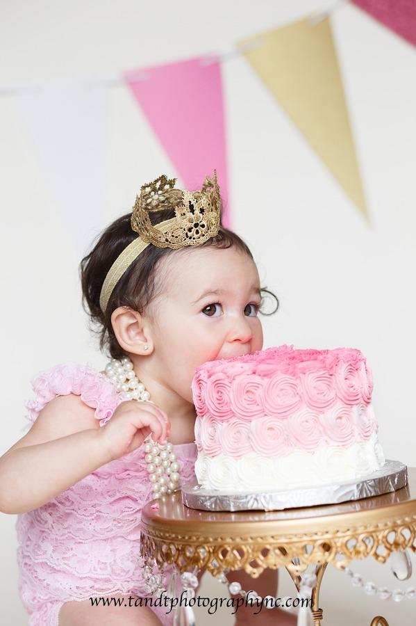1st Birthday Photographer Raleigh NC Cake Smash Photography