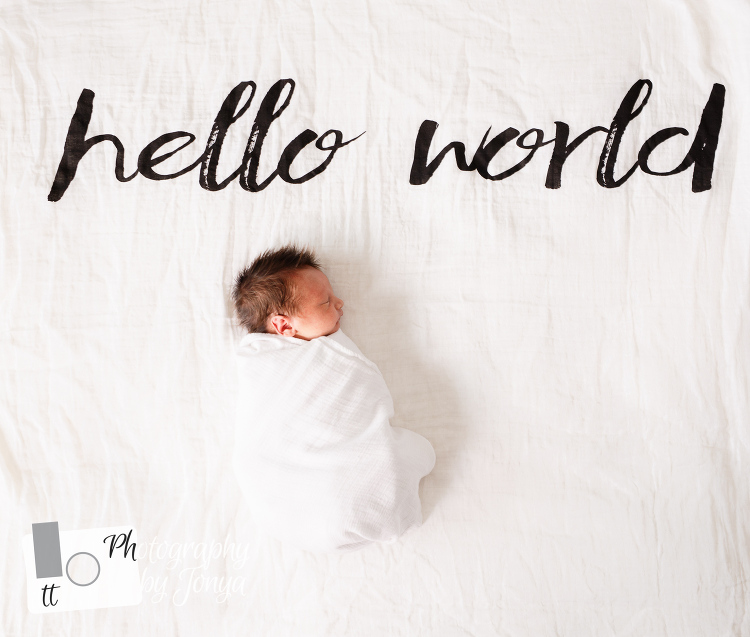 Newborn Photographer in Raleigh North Carolina