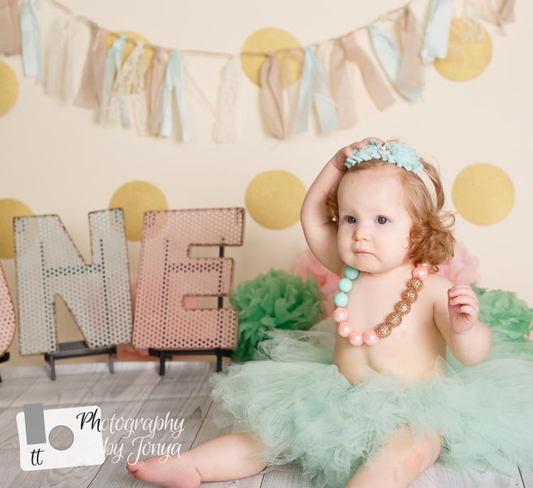 1 year old girl photo session