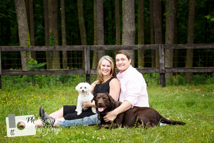 maternity photo with dogs