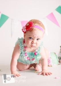 Cake smash and first birthday photography Raleigh