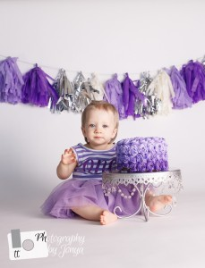 Purple and silver cake smash photo
