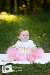 First Birthday Photographer, Holly Springs NC