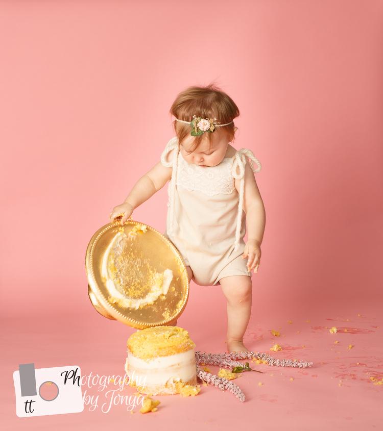 North Carolina first birthday photography