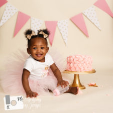 Cake Smash Photographer Raleigh NC
