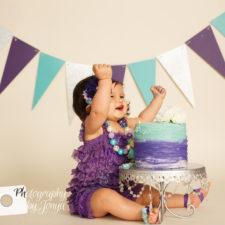 First birthday photographer Raleigh NC
