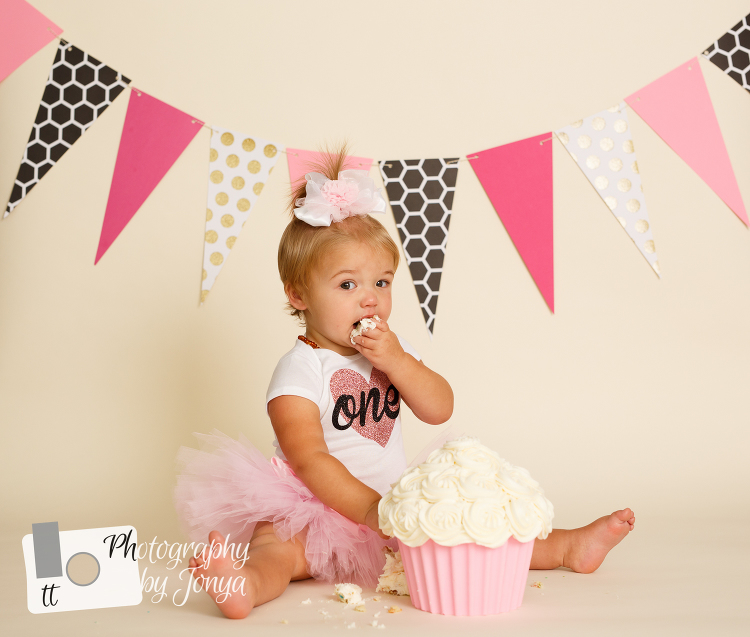 Raleigh first birthday photographer