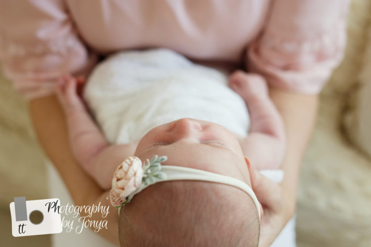 Apex NC Newborn Photographer