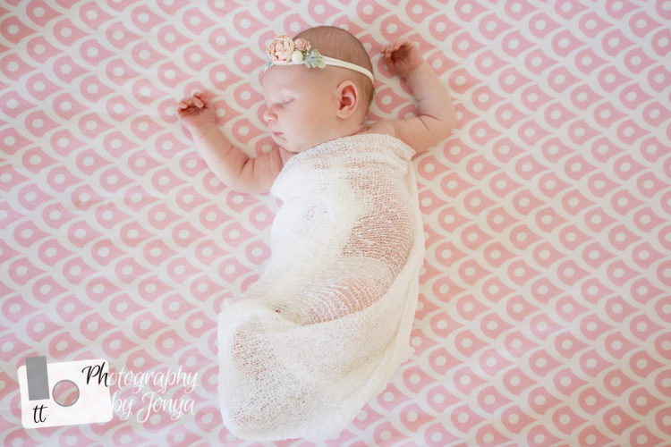 Apex newborn photographer